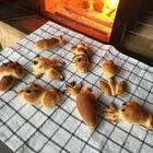 かまどの日「からすのパンやさん」