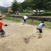 田んぼで泥あそびのサムネイル
